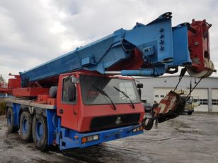 GROVE GMK 3050 mobile crane